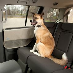 Waterproof car door guard protects your car from dog hair, slobber, and mud. Kurgo& dog door guard is backed by a lifetime warranty Dog Car Seats, Dog Furniture, Dog Travel, Dog Carrier, Dog Supplies, Doge, Best Dogs, Your Dog, Puppies