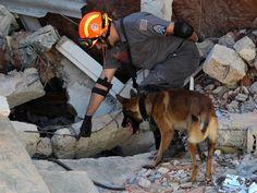 O Empenho Notícias & Afins: Bombeiros localizam corpo de mulher em desabamento...
