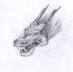 DeviantArt: More Like Dragon Heads by KatePfeilschiefter