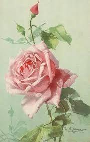Resultado de imagen de rosas victorianas