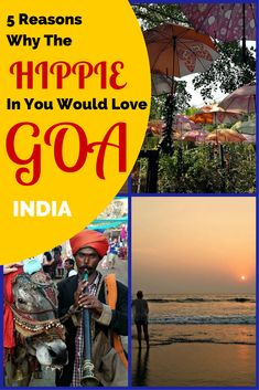 Its not about the hippies in Goa who stayed behind but the vibe they created. There are so many reason to love Goa and to add it to your bucket list. #goa #india #travelblog #hippie
