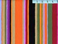 Bold Serape Home Dec Fabric