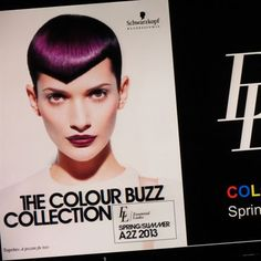 Schwarzkopf Professional  Click pic for full color forecast
