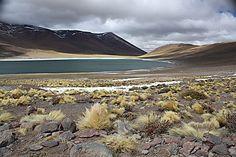 Autour de San Pedro d'Atacama