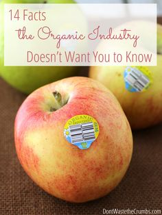 Before you spend another dollar on organic food, read these 14 facts the organic industry doesn't want you to know. You'll be shocked to learn the truth! :: DontWastetheCrumbs.com