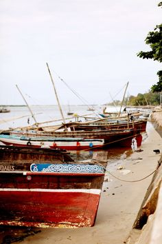 Lamu, Kenya. Absolutely yes.