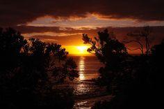 Vivonne Bay ... Kangaroo Island