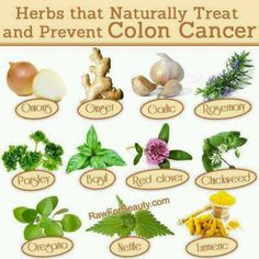 Foods to prevent colon cancer