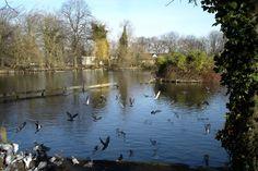 Alexandra Park Lake, Wood Green, London  http://static.panoramio.com/photos/large/7703531.jpg