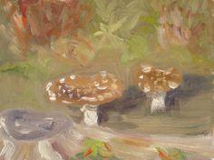 Mushrooms — Rob Tijink