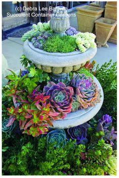 DEBRA LEE BALDWIN                                                                                Garden Fountain Aroeira.