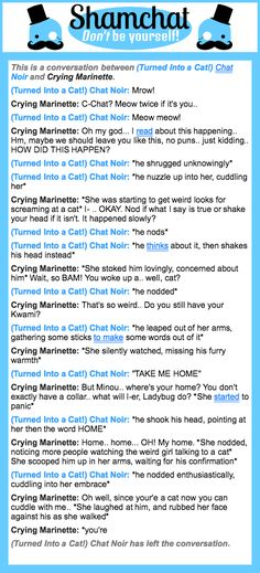A conversation between Crying Marinette and  (Turned Into a Cat!) Chat Noir