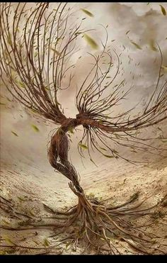 Anger is like a strong wind. It calms down after a while, But lots of branches are already broken. ~ Rumi