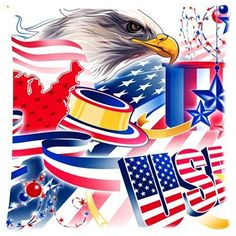 Elegant Comfort Luxurious Silky Soft American Flag Bald Eagle Zippered Pillow Case 18x18 inch (one side)