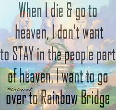I want to go to Rainbow Bridge, too! Dog Quotes, Animal Quotes, I Love Dogs, Puppy Love, Pet Sitter, Pet Loss Grief, Pet Remembrance, Rainbow Bridge, In Loving Memory