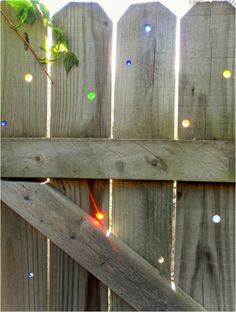 Marbles in a privacy fence - Backyard Farming the Urban Homestead