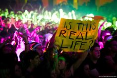 EDM shows are seriously mind blowing to the point where you question reality mor. Festivals, Edm Festival, Festival Style, Concert Signs, Concert Posters, 1d Concert, Edm Music, Dance Music, Steam Punk