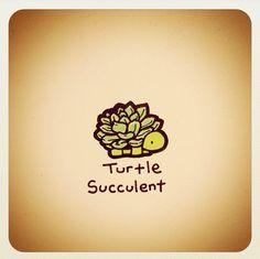 my 2 fav things Cute Turtle Drawings, Animal Drawings, Cute Drawings, Tiny Turtle, Turtle Love, Cute Turtles, Baby Turtles, Kawaii Turtle, Little Mac