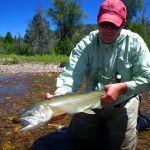 26-inch-Utah-rainbow-trout