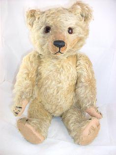 William J Terry bear, 1910-20