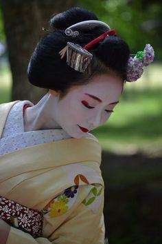 June 2017: maiko Mikako of Gion Kobu by Hiroyuki Nishikizawa on Facebook ༼ つ ◕◡◕ ༽つ Geisha-kai on P a t r e o n || Instagram