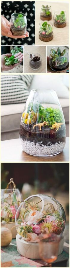 Beautiful plants inside the glasses would give closer to nature once you use them for decoration. Go green and try this idea. The whole forest inside the glass looks so…