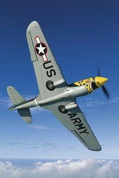 Beautiful Lines — british-eevee:   P-40 in flight (Post War)
