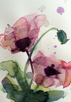 Poppies no. 15 Original Floral Botanical Watercolor Painting by Angela Moulton 5…