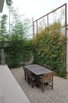 10. Bring climbing plants to new heights with a wire trellis. Less expected than wood, a metal framed trellis gives the patio an appealingly rustic look. The custom trellis design shown here is from TerraTrellis.