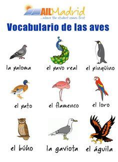 Improve your #spanish  with this #vocabulary ! :D #spanishschool #Madrid #studyspanish #vocabulario