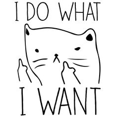 My life motto right meow                                                       …