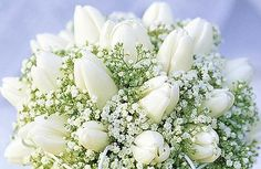 Absolutely in LOVE with this baby breath and white tulip bouquet!!