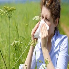 Effective Home Remedies For Pollen Allergies