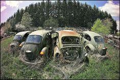 VW R.I.P.