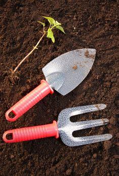 Veľký výber užitočných a dobrých nápadov pre efektívnejšie pestovanie rastlín v črepníkoch aj v záhrade | Babské Veci Household Cleaning Tips, Cleaning Hacks, Organic Gardening, Gardening Tips, Vegetable Gardening, Planting Vegetables, Organic Farming, Veggies, Garden Projects