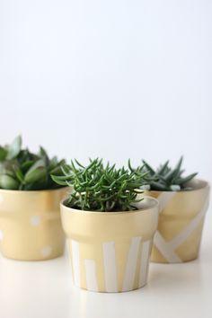 Gilded Succulent Pots