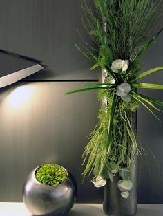 Design végétal, végétaux stabilisés.