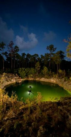 Blue Hole in the Bahamas. . Any takers?.. who wants to go. . Looks so cool!