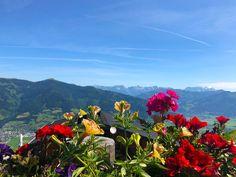 Summer flowers on the Maiskogel. Enjoy a scenic trip up the MK Maiskogelbahn & visit this mountain paradise. Alpine Village, Summer Flowers, Paradise, Adventure, Mountains, Nature, Travel, Kaprun, Naturaleza