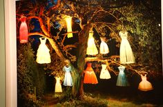 """The dress lamp tree, England"" Tim Walker. Exposición ""Vogue like a painting"" Museo Thyssen Bornemisza  #Fotografía #Moda #Madrid #Arterecord 2015 https://twitter.com/arterecord"