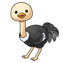 canadian goose fluffs animals pinterest clip art animal and