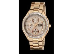 Drive Citizen Eco Drive With Gold Tone Dial , Accents, Case and Band Date Mineral Crystal Luminous Hour Minute Hands 48 Crystal Bezel