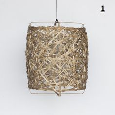z3 Bird's nest - Ay Illuminate