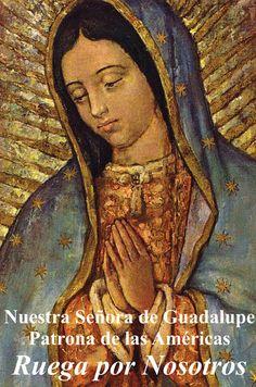 Religious Liberty Card Spanish