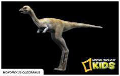 Mononykus Olecranus Nat'l Geographic Info Cards
