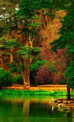 Nature Beautiful Photos Of Nature, Beautiful Sites, Amazing Nature, Beautiful World, Beautiful Landscapes, Beautiful Gardens, Beautiful Places, Beautiful Pictures, Beautiful Scenery