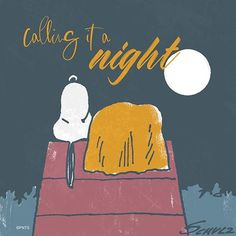 Goodnight Snoopy Images, Snoopy Pictures, Good Night Sleep Tight, Good Night Gif, Good Night Greetings, Good Night Messages, Peanuts Cartoon, Peanuts Snoopy, Peanuts Comics