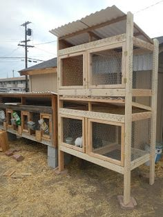 The Carpenter Family: Rabbit Hutch Construction, Pt 2
