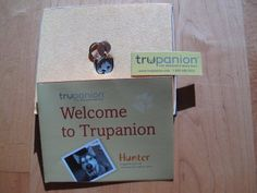 Two Pitties in the City: Trupanion Pet Insurance