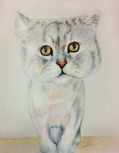 發呆的日子 #art #illustration #color #painting #cat #chinchilla